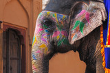 Decorated elephant at Amber Fort, Rajasthan state of India