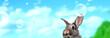 Leinwanddruck Bild - Osterkarte Himmel Panorama