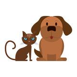 Dog and cat animals