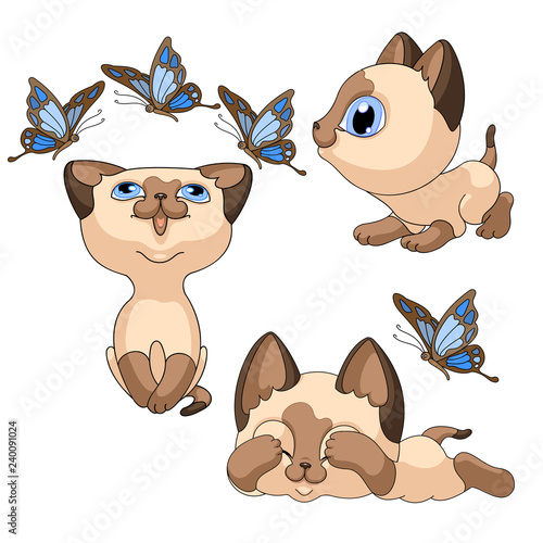 Siamese little cat lies closed eyes scared blue butterfly. vector illustration