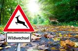 Schild mit Wildwechsel