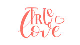 True Love - Isolated on White Background Hand Drawn Lettering. Vector Illustration Quote for Valentine Day. Handwritten Inscription Phrase for Sale, Banner, Invitation.