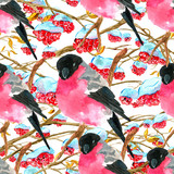Seamless pattern with bullfinch snowbird and winter tree branch with red berries on white. Natural hand painted watercolor illustration with animals