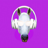 Contemporary art collage. Music concept. White horse DJ. Minimal - 240280654