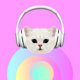 Contemporary art collage. Music concept. Funny Kitty DJ.  Pastel and pink vibes - 240280683