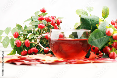 Tea. cup of herbal Dog rose tea with bunch branch Rosehips, types Rosa canina hips. Medicinal plants and herbs composition.
