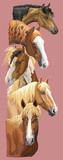 Postcard with horses 4 - 240302669