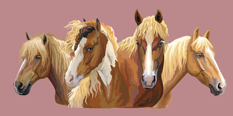 Set of horses breeds 6 © alinart