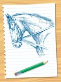 Fototapeta Konie - horse head © Moriz