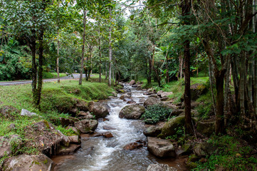 Fluss im paradisischem Dschungel im Norden von Thailand © marc