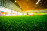 Artifact grass Indoor Soccer training field stadium © junce11