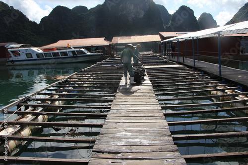 Acrylglas Pier allevamento di ostrche ad Halong bay per perle