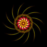 Fleur des iris - 240390032