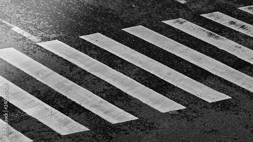 Crosswalk in Black and white - 240392426