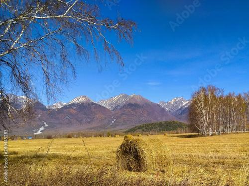 Haystack in the field