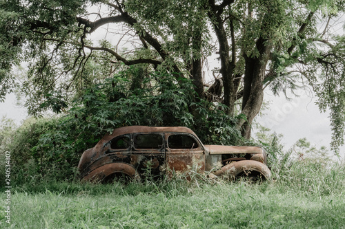 old car, burned, rusted, abandoned in the forest