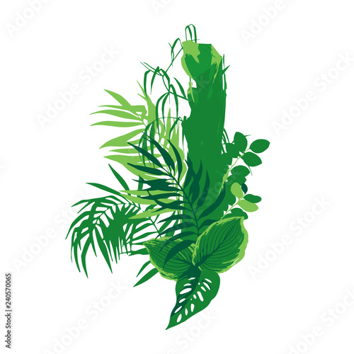 Graphic design with exotic leaves and trees in green colors.