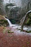 Pequeña cascada en un rincón del bosque - 240617622