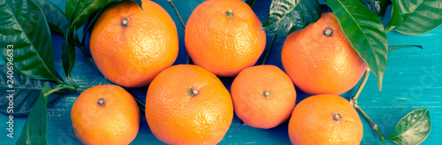 Banner Ripe tangerines with green leaves on a bright blue background Top view flat lay copy space - 240696633