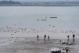 Plage bretonne à marée basse © Lenaick
