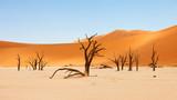 Namibian desert landscape - 240800805