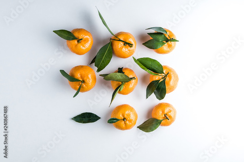 Tangerines on a light background - 240867488
