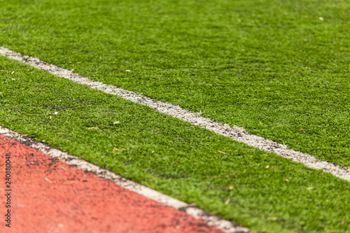 Green grass on a soccer field as background - 240880048
