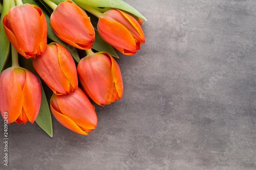 Leinwandbild Motiv Tulips, orange on the grey  background.