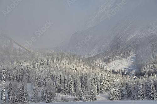 frozen and snowy landscape in winter