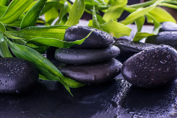 Green bamboo stems on the black massage stones with water drops