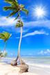 Leinwanddruck Bild - Cayo Levantado: Antillen, Karibik, Ferien, Tourismus, Sommer, Sonne, Strand, Auszeit, Meer, Glück, Entspannung, Meditation, Palmen, Himmel, Wolken: Traumurlaub an einem einsamen, karibischen Strand :)