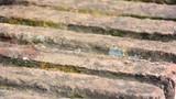 Textura ladrillos - 241020460