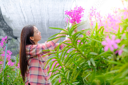 Women cutting pink orchids in the garden for sale