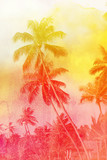 Retro photo of bright tropical palms on a sunny island - 241081866