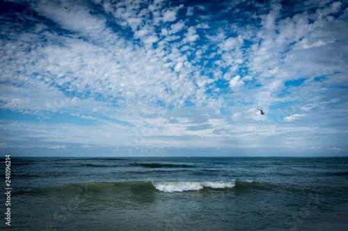 Île de Ré, France, vague de l'océan à la marée montante. © f_chapolard