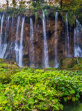 Picturesque streams of waterfalls