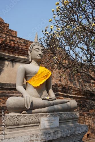 buddha, ayutthaya thailand