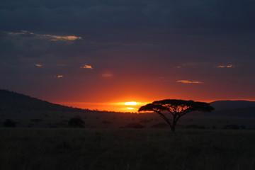 Sonnenuntergang in der Savanne der Serengeti