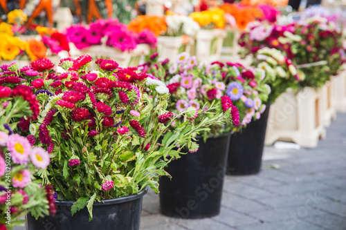 Flowers in a market of Provence, France © bluesnaps