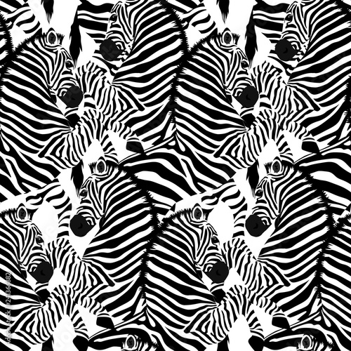 mata magnetyczna Zebra seamless pattern. Wild animal, striped black and white. design trendy fabric texture. Vector illustration isolated on white background.