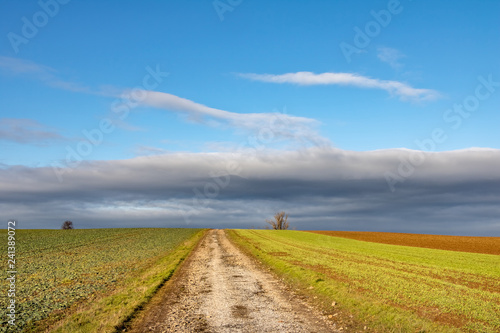 Dirt road between autumn or spring fields under blue sky