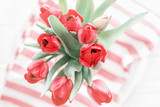 Fresh red tulips flowers on a striped background. Top view