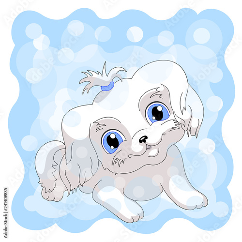 white cute puppy blue background