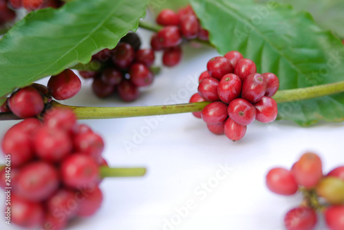Red ripe coffee beans with green leaves, selective focus