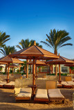 beach in the egypt - 241431817