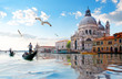 Seagulls and Grand Canal