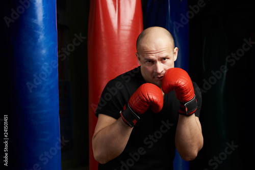 Portrait of fighter boxing man