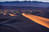 Sand Dunes at dawn. - 241510056