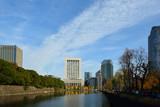 東京の皇居お濠沿いの銀杏並木