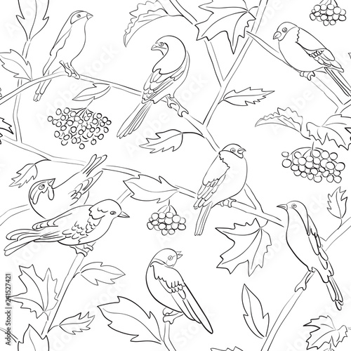 obraz PCV white vector seamless pattern with black silhouettes of birds and branches